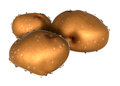 Three brown potato covered with waterdrops foods and dishes ser series Stock Photos