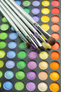 Three Brushes on the palette of eye shadow