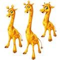 Three cartoon giraffe on white background. Vector