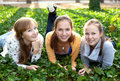 Three cheerful student girls laying on the grass Stock Image