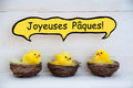 Three chicks with comic speech balloon french joyeuses paques means happy easter sitting in baskets or nest yellow feathers on Stock Images