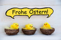 Three chicks with comic speech balloon german frohe ostern means happy easter sitting in baskets or nest yellow feathers on white Stock Photo