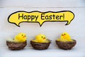 Three chicks with comic speech balloon happy easter sitting in baskets or nest yellow feathers on white wooden background Stock Photography