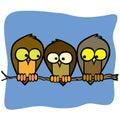 Three cute isolated cartoon birds in a tree branch Royalty Free Stock Photo