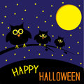 Three cute owls starry night and moon happy hall halloween card vector illustration Royalty Free Stock Photo