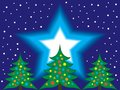 Christmas Trees and Starry Night Sky Royalty Free Stock Photo