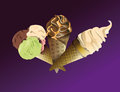 Three delicious ice creams with different flavors wafer cups Stock Images