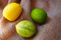 Three different types of lemons spain Stock Image