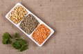 Three dried legumes with fresh herbs types of coriander Royalty Free Stock Photography