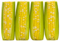 Three ears of supersweet corn Stock Photos
