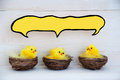 Three easter chicks with blank comic speech balloon for copy space sitting in baskets or nest yellow feathers on white wooden Royalty Free Stock Photos