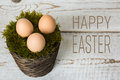 Three Easter eggs in a moss basket, happy easter concept, retro Easter background