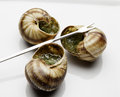 Three escargot ready to eat plate fork Royalty Free Stock Photos