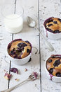Three french clafoutis with blueberries and cherries on ceramic ramekins on rustic white vintage background with milk glass Royalty Free Stock Photos