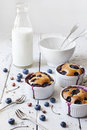 Three french clafoutis with blueberries and cherries on ceramic ramekins on rustic white vintage background with milk glass bottle Stock Images