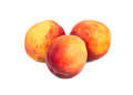 Three fresh peaches Royalty Free Stock Photo