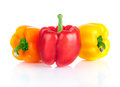 Three fresh sweet pepper  on white background Royalty Free Stock Images