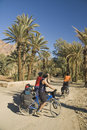 Three friends cycling in south Morocco Royalty Free Stock Photo