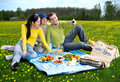 Three friends at picnic Royalty Free Stock Image