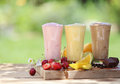 Three fruit or choclate smoothies or milkshakes with fresh organic ingredients including strawberries cherries citrus coffee beans Royalty Free Stock Photography