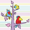 Three funny birdies Stock Photo