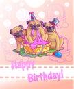 Three funny pugs greeting card Royalty Free Stock Image