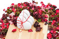 Three gingerbread hearts in the background of sachet petals Stock Photo