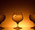 Three glass cognac beverage dark gold background Stock Photos