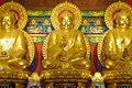 Three Golden Buddha Statue Royalty Free Stock Photo