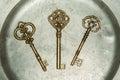 Three golden keys on iron plate Royalty Free Stock Photo
