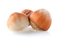 Three hazelnuts Stock Images