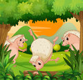 Three hedgehogs playing in the woods illustration of Stock Images