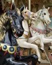 Three horses on fairground carousel Stock Images