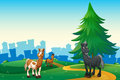 Three horses at the hilltop across the village illustration of Stock Photos