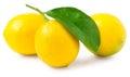 Three lemons isolated on white Royalty Free Stock Photo