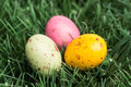 Three little easter eggs nestled grass Royalty Free Stock Images