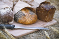 Three loaves of bread on a board with a knife, whole grain bread Royalty Free Stock Photo