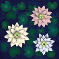 Three lotus cut from paper on dark blue background
