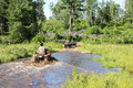 Three men driving ATV quad through dirty water in forest Royalty Free Stock Photo