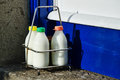 Three milks today milk bottles in a holder on a doorstep in mousehole cornwall Royalty Free Stock Images