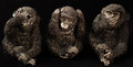 Three monkeys Royalty Free Stock Photo