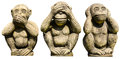 Three monkeys statues on the white background Stock Images