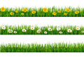 Three Nature Backgrounds Of Gr...