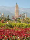 Three pagodas Dali, China Stock Image