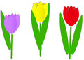 Three paper tulips Royalty Free Stock Image