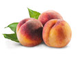 Three peaches Royalty Free Stock Photo
