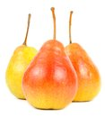 Three pears isolated on white background fresh and juicy with stalks a Royalty Free Stock Photography