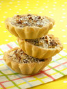 Three Pecan Tarts Royalty Free Stock Image