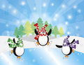 Three Penguins Ice Skate in Winter Illustration Royalty Free Stock Photo