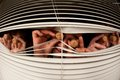 Three people look out of the window funny through blinds corks in eyes Royalty Free Stock Image